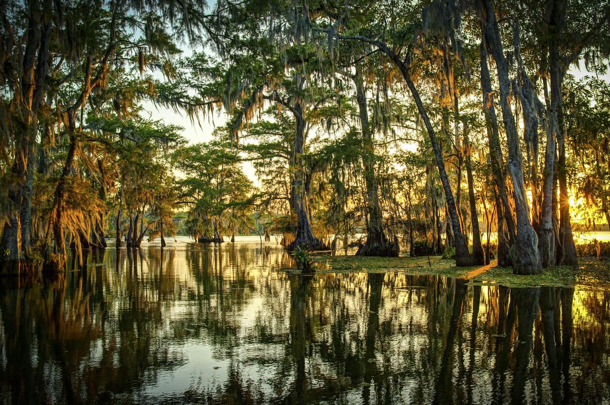 Unclaimed Money Louisiana